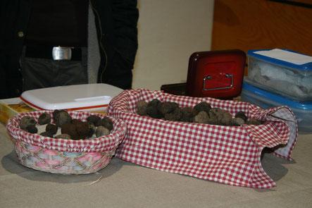 saveur du pays cathare : la truffe