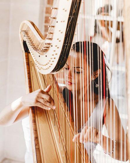 exposé harpe