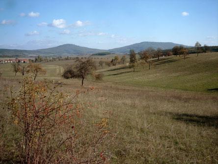 Grabfelder Kulturlandschaft mit Blick auf die Gleichberge