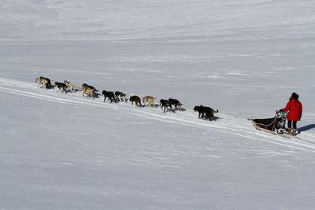 Trail in die Hardanger Vidda (AF)