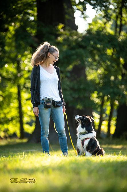 Gewaltfreies Hundetraining in Göttingen