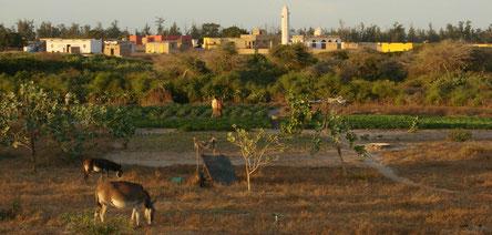 Village de Deny Guedj Nord, bassin du lac rose - Sénégal