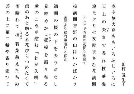 あけび通信 第114号(2017年5月)