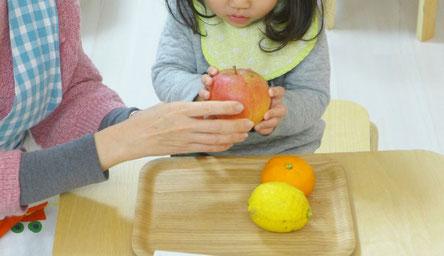 モンテッソーリ活動で、ステッラコース(1歳児)生徒が果物を使った言語活動を行っています