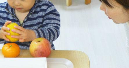 モンテッソーリの果物を使った言語活動で、先生の声がけでステッラコース(1歳児)の生徒がレモンを手に取っています。