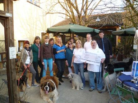 Den Erlös der Hunderally spendet Hundefreunde-Schierling e.V. an Sternstunden München