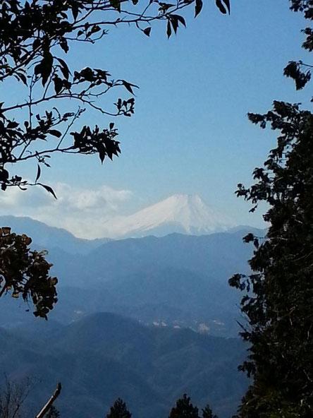 高尾山から富士山を望む(平成25年1月撮影)