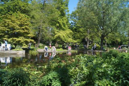 Planten un Blomen: Ruhiges Wasser und viel Grün