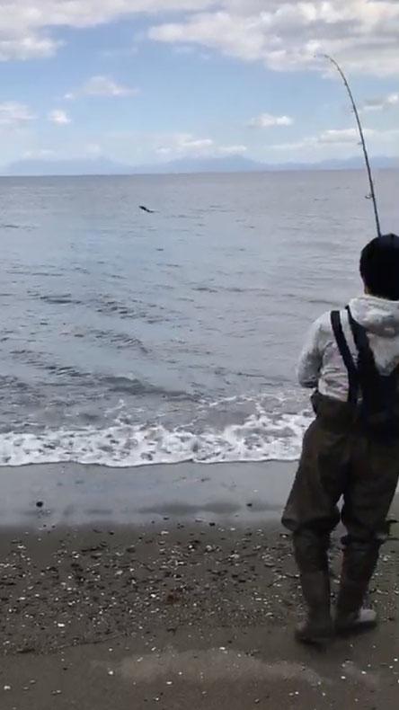 スタッフブログ 理学療法士の鮭釣り 写真3