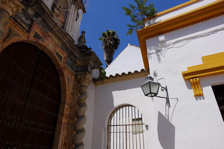 Photographie, Espagne, Andalousie, Cordoue, judería, église, rue, place, cyprès, maison, blanc, vert, couleurs, fleurs, Mathieu Guillochon