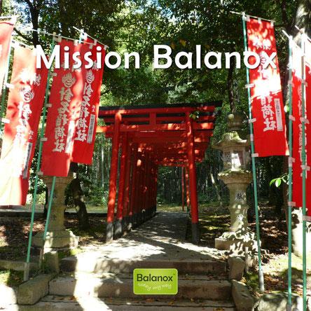 Mission Balanox: Menschen dazu bewegen, ihre Gesundhit aktiv in die Hand zu nehmen.