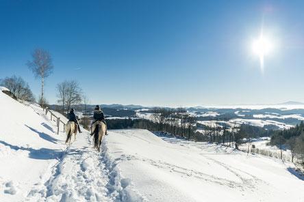 Winterreiten, Wanderreithof Heimelsteiner, Wanderreiten