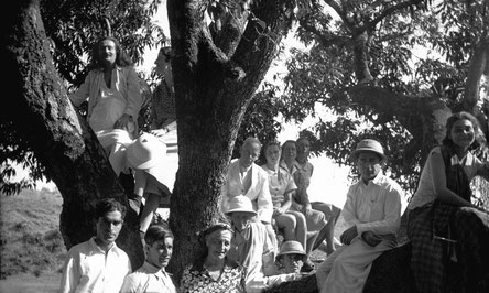 MSI Collection ; India ( centre ) leaning against the tree at Trimbak, near Nasik, India