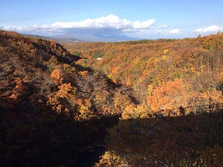松川渓谷の吊り橋より。紅葉も終わりかけでしたが素晴らしかった~!
