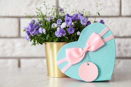 ずらりと並べられたポーランド製のマグカップとティーポット。ガラスの花びんに活けられたレンギョウ。