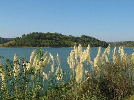 Lac de Saint-Frajou
