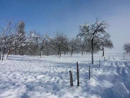 Winter auf dem Hof Ganal