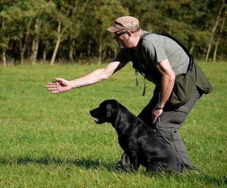 Voranschicken auf einen dem Hund unbekannten Punkt