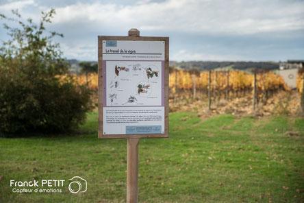 Itinerario enológico castillo de Crouseilles Madiran