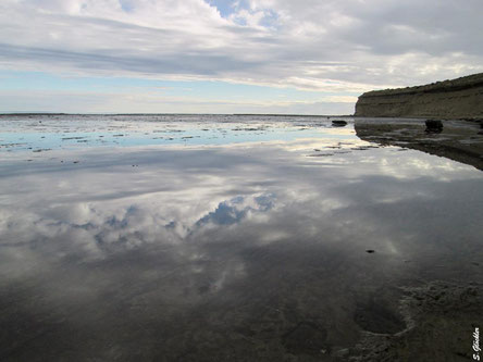 Einzigartige Lichtstimmungen und Spiegelungen auf der Peninsula Valdés