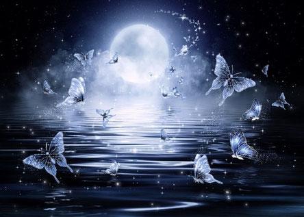 Sprirituelle Hypnose Zürich  - Bild von Larisa K. butterfly auf Pixabay