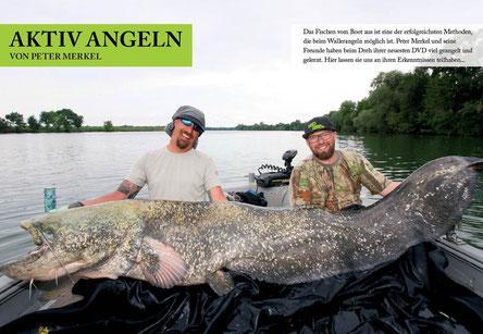 Patrick Haas und Peter Merkel zeigen Euch im Heft wie Wild Cat´z mit leichten Gerät Fische über 250cm fangen.