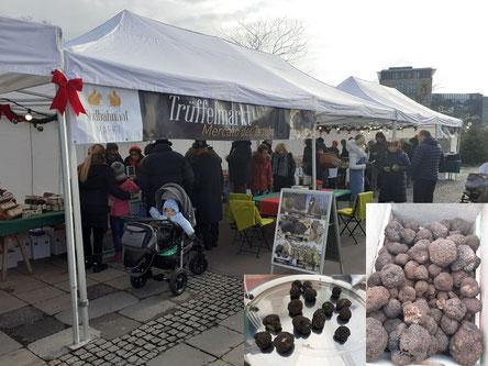 """""""Mercato del Tartufo"""" am Linzer Südbahnhofmarkt statt – ein Trüffelmarkt statt. Bei umbrischen und itaienischen Trüffelhändlern und sicher wieder einem italienischen Olivenöl-Experten konnten hier Trüffelliebhaber die wohl teuersten Knolle der Welt nach"""