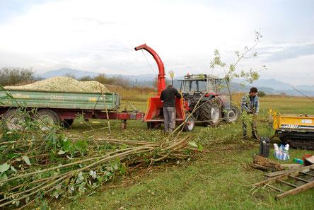 Naturschutzpflege, Grünflächenpflege, Gartenholzerei, Forstarbeiten