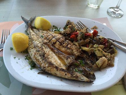 Sö Fish..,