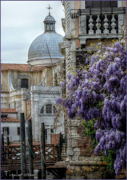 Venezia e la Primavera