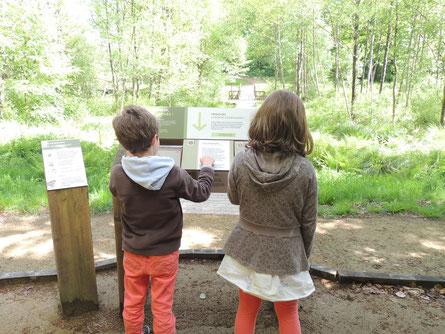Station découverte-Sentier secrets de vallé©Louvigné Communauté