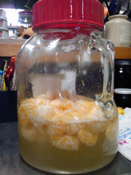 用意するのもの:広口の瓶(梅酒をつくるような) 材料:摘果みかん1kg 砂糖1kg  みかんの皮を剥きます。果実を水平に切って果汁が出やすくします。 手が入るくらいの広口のビンに砂糖と一緒につけ込みます。 涼しく目の届く所に置く。7〜10日かけて室温で発酵させます。  最初の3日くらい(水分が出るまで)は上下に振ったりする。 水分があがってきたら毎日きれいな手でよく混ぜる。 温度が上がってプシュプシュっとしたら生きてる合図。 砂糖がすべてなくなるまで毎日混ぜて見守る。 もし青カビが発生したら取り出す。