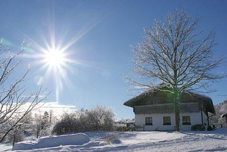 Die Alte Mühle im Winter