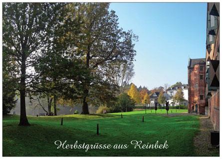 265 Reinbek Herbst Schlosspark