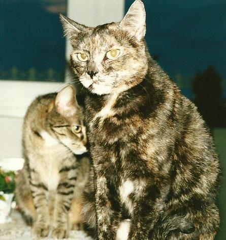 ... auch lange her ... Grizzy und Tilly