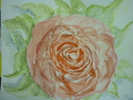 Rose - März 2014