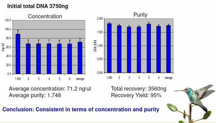 PCR-produkt aufreinigungskit