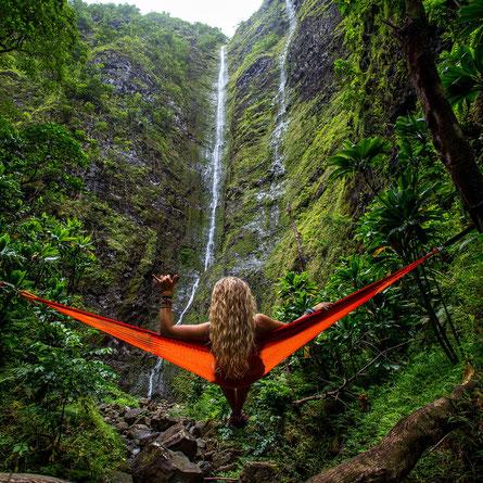 Palmöl palmoelfrei Urwald Regenwald Schutz Healthlove
