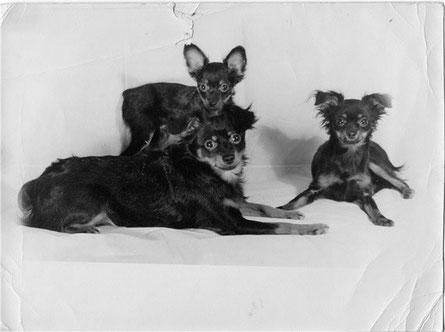 фото из архива Е.Ф.Жаровой