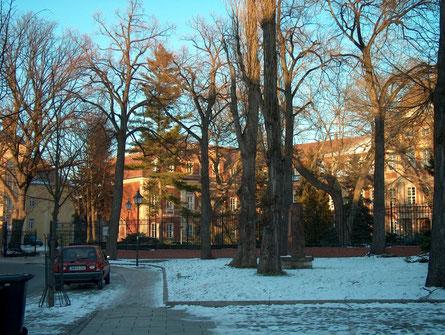 Schlossansicht im Winter Foto: O.Bleich