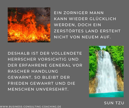 Zitate Business Consulting Coaching Dr Sandra Schmidt