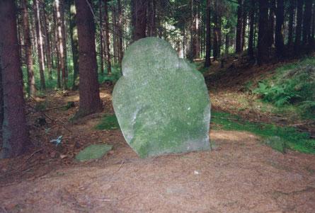 Bild: Teichler Fuhrmannsstein Wünschendorf  Erzgebirge