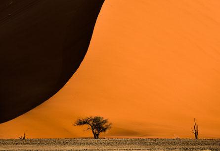 Die Menschen Afrikas