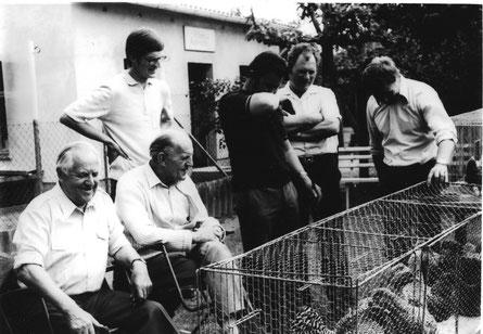 Tierbesprechungen wie 1985 in Grimmen trugen zur stetigen Verbesserung der Rasse bei. (v.L. die Zuchtfreunde: Zemke (1Vors. SZG Amrocks), Kohl (SR – stehend) unbekannt Boldt, Kunze, Westphal (SR)