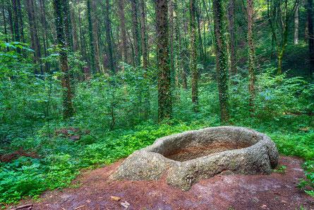 Die steinerne Wanne in der Wolfsschlucht in Bad Kreuzen