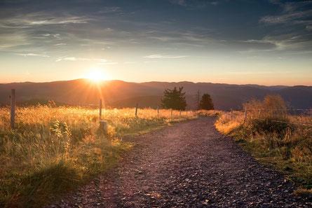 Ein schöner Weg über dem die Sonne aufgeht