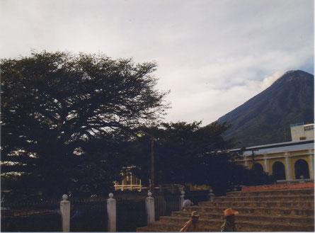 Noordelijke tak van de Ceiba en Vulkaan de Agua, op 21 dec. 2003