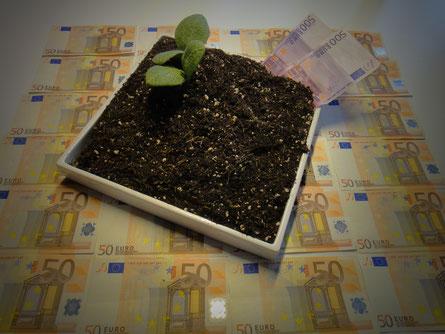 Bodenpreise - Foto: Carl Prager