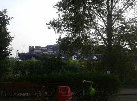 Blick auf die Elbe vom Elbuferwanderweg in Hamburg Blankenese