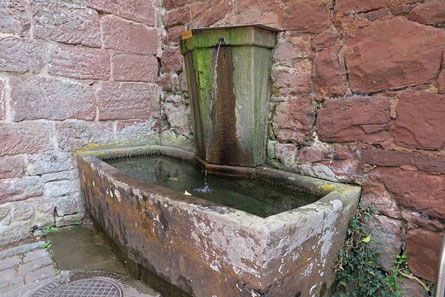 © Traudi - der Schlossbrunnen im Innenhof der Burgruine